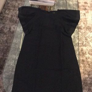 J crew-Dotted Swiss lined dress or top zipper back